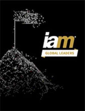 Issue #IAM Global Leaders 2021