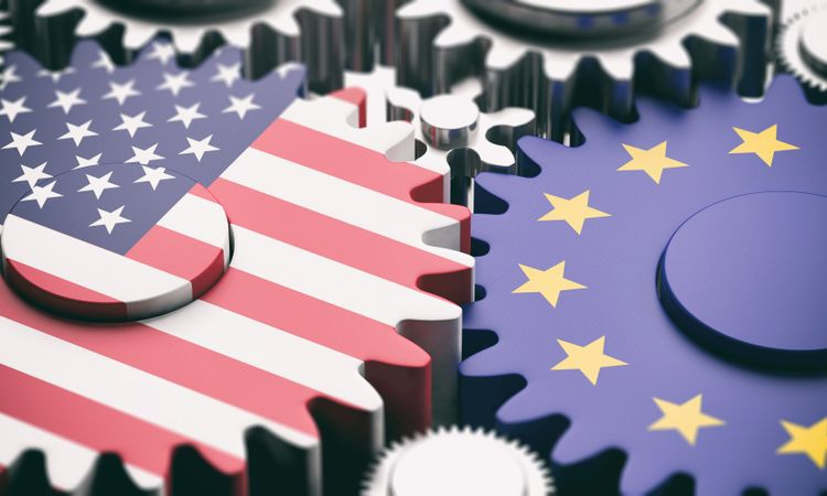 Functionality in the European Union and the United States: converging worlds or diverging approaches?