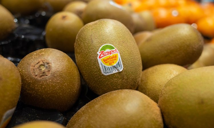 Zespri asks kiwifruit growers to explore a deal in China to address unauthorised plantings