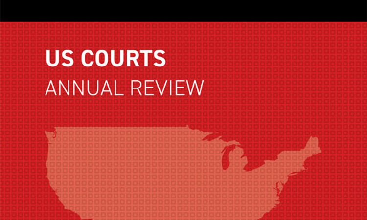 The US Courts Annual Review - Edition 2