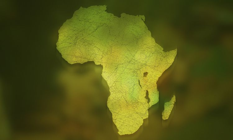 AfrIPI officially launches but firms urged to raise awareness of ongoing activities