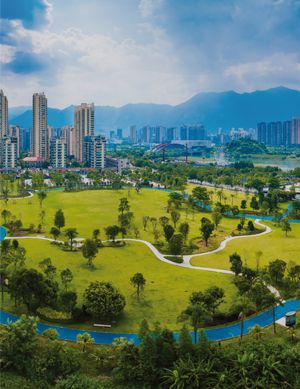 Issue #China: Managing the IP Lifecycle 2022