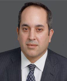 Daniel L Stein