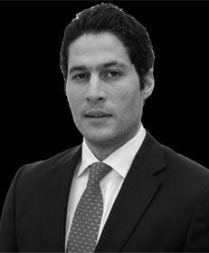 Farouk El-Hosseny