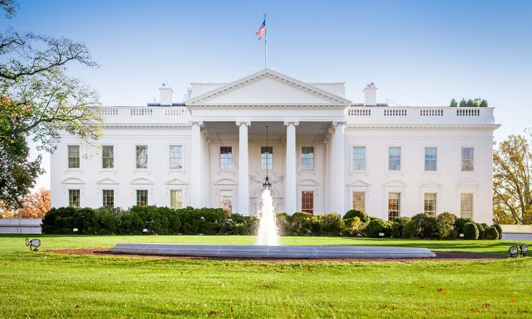 Legislators tell the White House that IP must move up the to-do list