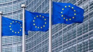 "Lawyers urge caution as ombudsman probes EU's ""revolving door"""