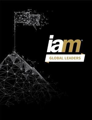 Issue #IAM Global Leaders 2020