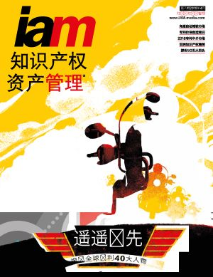 Issue #IAM Chinese issue 8