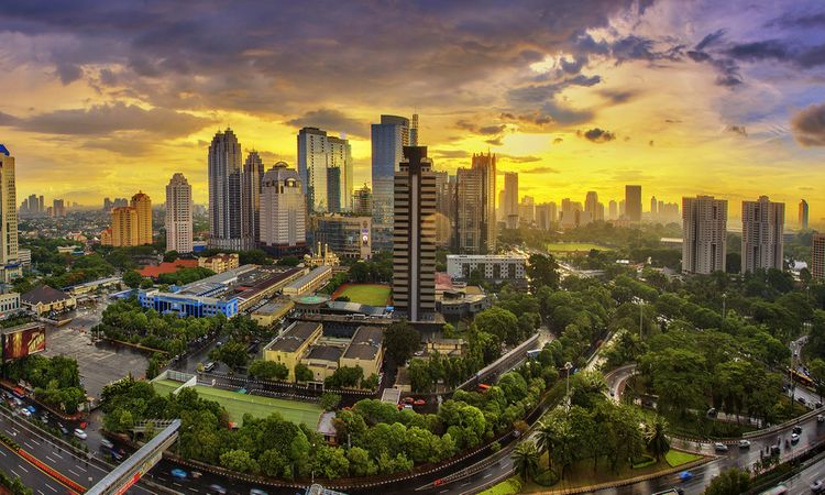 New data on the Madrid Protocol in Indonesia
